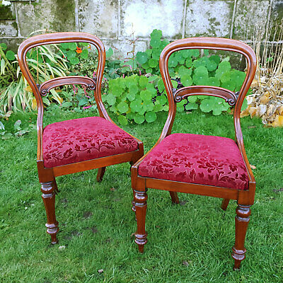 Early Victorian Pair of Balloon Back Mahogany Dining Chairs C1850