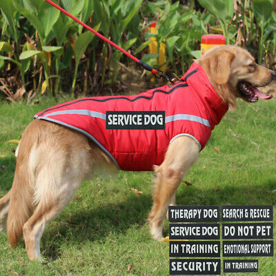 Extra patches for harness Vest Service Dog, In Training, SECURITY, SUPPORTMD cv