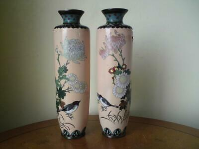 Pair antique Japanese Meiji Cloisonne vase Birds Chrysanthemum a/f