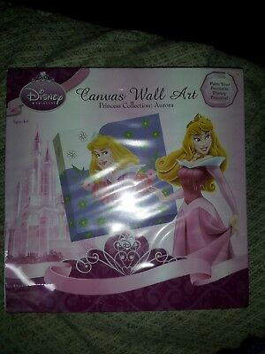 Disney Aurora painting kit canvas includes paints