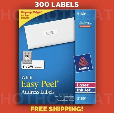 """300 Avery 5160/6240/8160/5960/5260 Address Mailing Shipping Labels 1"""" x 2 5/8"""""""