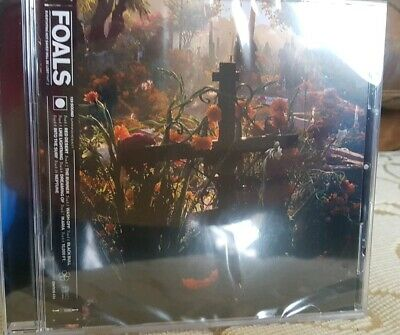 Foals - Everything Not Saved Will Be Lost, Part 2. New CD.