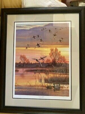 "Cynthie Fisher ""Evening Refuge"" Framed, Signed, Limited Edition Art Print"