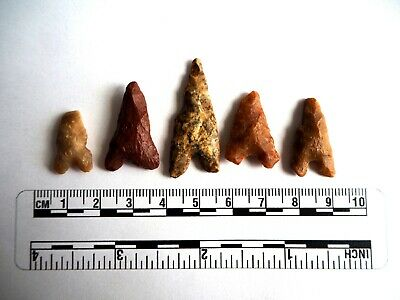 Neolithic Arrowheads x 5, Eiffel / Moroccan Points, Genuine - 4000BC  (2479)