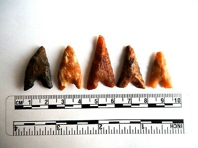 Neolithic Arrowheads x 5, Eiffel / Moroccan Points, Genuine - 4000BC  (2487)
