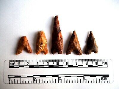 Neolithic Arrowheads x 5, Eiffel / Moroccan Points, Genuine - 4000BC  (2493)