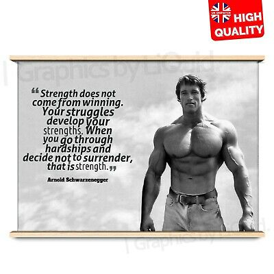 Arnold Schwarzenegger Gym Poster Motivation Quote Conquer | A4 A3 A2 A1 |