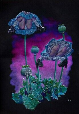 """""""Upskirt Poppies"""" framed pencil drawing by Dale Keogh"""