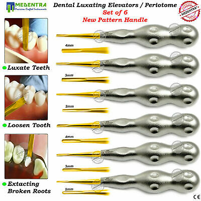 6PCS Dental Surgical Root Luxating Oral Tooth Extraction Loosening Elevators CE