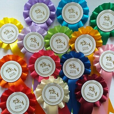 Horse Rosettes Horse Head Well Done Rosettes x 10 Assorted Colours FREE POSTAGE
