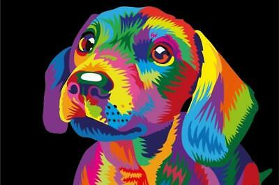 Paint By Numbers Kit - Adults / Beginners - Dog - 20in x 16in