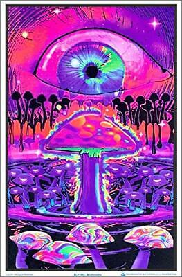 "Mushroom Ripple Laminated Blacklight Poster - 23.5"" x 35.5"""