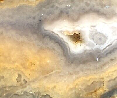 Prudent Man Plume Agate Slab Lapidary Cabbing Rough