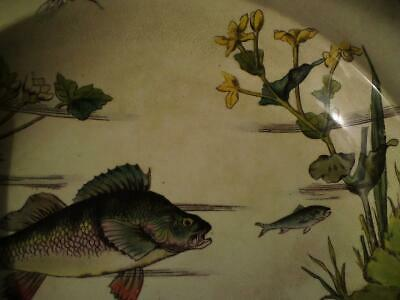 Aesthetic Movement George Jones Pottery Dish - Fish Dragonfly aquatic Plants