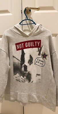 Girls zara age 13-14, grey hoodie with dog and not guilty print, good condition