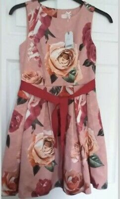 girls next dress age 13 years BNWT
