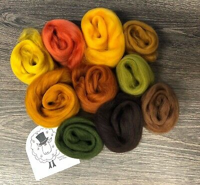 Merino wool roving/tops - Autumn Landscapes - wet/needle felting/spinning (AC1)