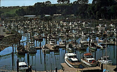 CHARTER FISHING BOATS IN FORT BRAGG CA