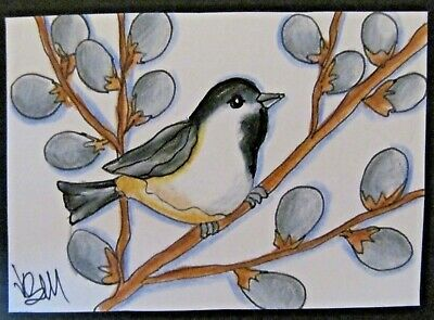 ACEO Original Chickadee Willow Catkins Spring Colored Pencil Ink 2014 njbeanie24
