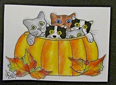 ACEO Original Cat Kitties in Pumpkin Autumn Colored Pencil Ink 2014 njbeanie24