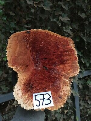 Red Mallee Burl Woodturning Blanks/burrs/exotic Woods NEW STOCK JUST IN !!