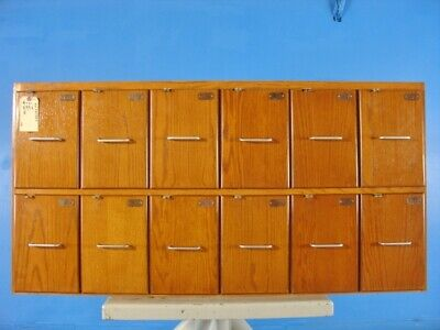 Vintage Wooden Locker with 12 drawer