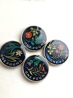 Enamelled Coin  £1 One Pound Flower Set Coin  2014