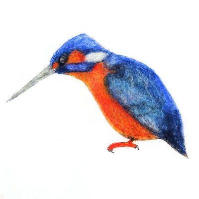 Kingfisher Painting with Wool Pack by The Makerss