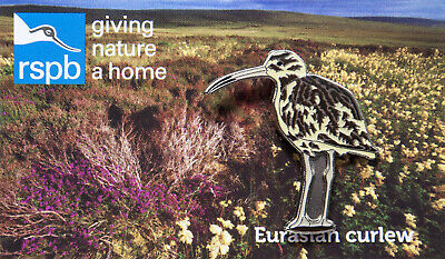 RSPB Pin Badge | Eurasian curlew (00785)