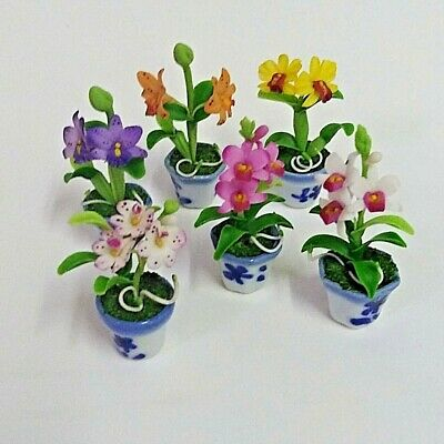 7 Dollhouse Miniature Accessories Fairy Garden Flowers Colorful Blank Tulips