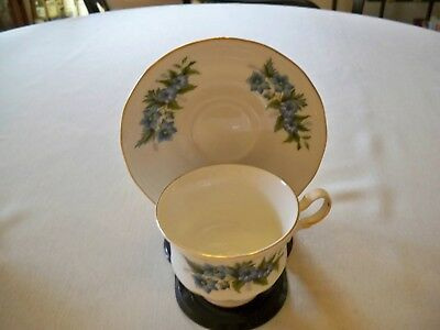 Queen Anne Bone China Tea Cup and Saucer Set Blue Flowers and Gold Trim