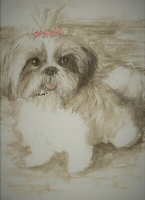 Shih Tzu2a dog 8x10 art print poster watercolor painting