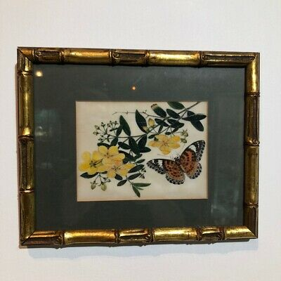 Chinese Export Pith Painting, butterfly & flowers, mid 19thc