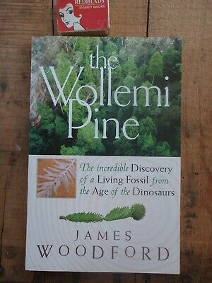 Living Fossils  Wollemi Pine Tree  illustrated