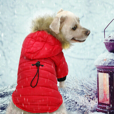 Small Dog Winter Coat Chihuahua Clothes Warm Jacket Hoodie Outfit for Pet Puppy