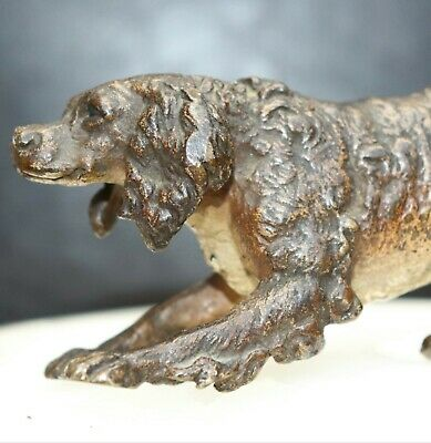 Large Vienna bronze cold painted-Hunting Dog -late 19th century