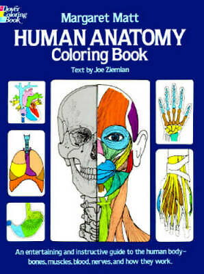 Human Anatomy Coloring Book (Dover Children's Science Books) - VERY GOOD