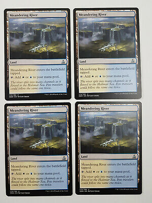 x4 Meandering River//Rivière sinueuse MTG Magic OGW - French//VF