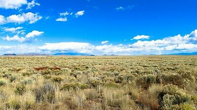 Fabulous 5.1 Acre Ranch, Colorado, Fronts County Road, No Reserve Auction! $1