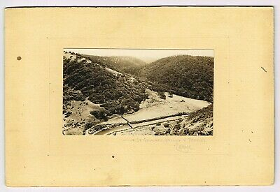 ANTIQUE REAL PHOTO ON BOARD: ST GEORGE'S VALLEY, TEDDY'S LOOKOUT Lorne,VIC *A/F*