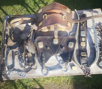 Very Old Pre-owend Large Working Horse Leather Harness With  No2 Brass Hames