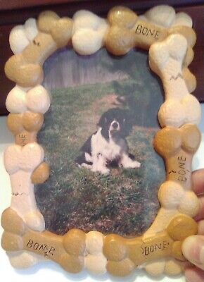 Picture Frame For Your Dog