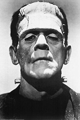 Frankenstein Movie (Boris Karloff, Close-Up) Poster Print 24 x 36in
