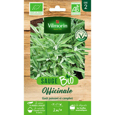 Sachet graines Sauge Officinale BIO - Salvia officinalis