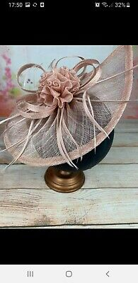 Facinator  Wedding /Races With Clip Or Headband New colour   pink Beautiful