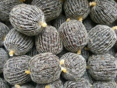 50 or 100 Large pre filled low oil pellets fishing pva mesh bags special offer