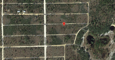 0.11 Acres In Interlachen- Putnam County, Florida - Cheap Owner Financing!!!