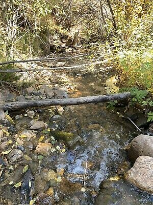 Colorado Gold Mine/ The Monte Cristo Placer/ Gold Mining Claim Au/Ag