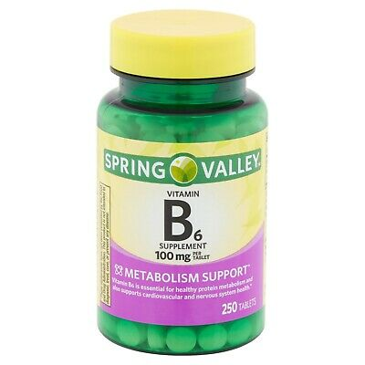 SPRING VALLEY B6 TABLETS 100mg 250ct