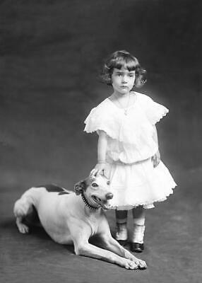 Antique Photo... Young Girl with Grey Hound Dog c.1900s ... Photo Reprint 5x7